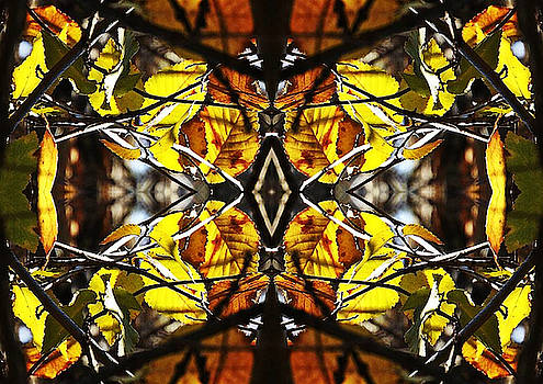 Autumn Stained Glass Leaves	 by Sherrie Hall