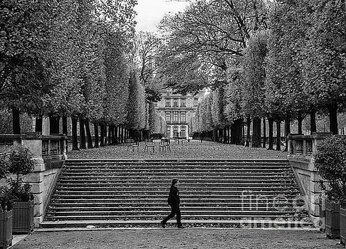 Wayne Moran - Autumn stroll along the Champs Elysees Paris France Black White