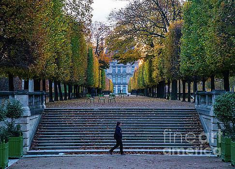 Autumn stroll along the Champs Elysees Paris France by Wayne Moran