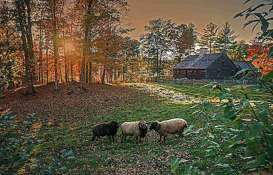 Autumn Sunset at the Old Farm by Wayne Marshall Chase