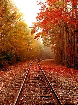 Autumn Tracks by Kelly Kennon