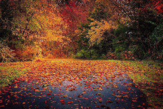 Autumn Trail by Allin Sorenson