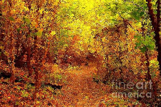 Autumn Trail in Van Gogh Style by Christopher Shellhammer