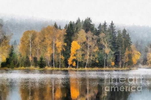 Autumn trees on the bank of lake by Michal Boubin