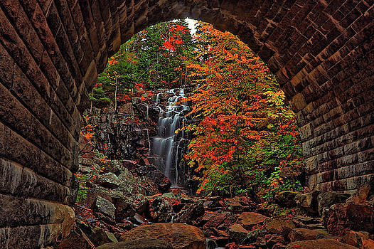 Autumn Tunnel Vision by Scott Mahon
