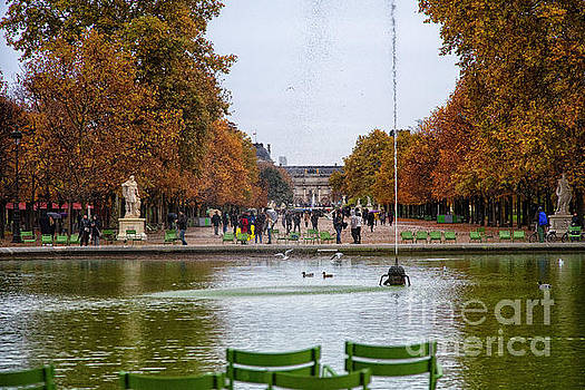 Wayne Moran - Autumn walk along the Champs Elysees
