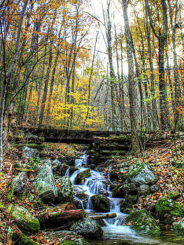 Brian Cole - Autumn Waterfall