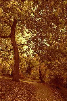 Jenny Rainbow - Autumnal Secret Garden 1