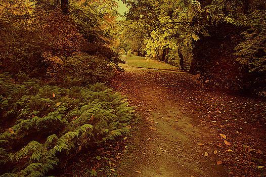 Jenny Rainbow - Autumnal Secret Garden 2