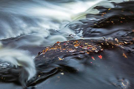 Autumn's Impression by Tom Clark