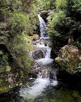 Avalanche Creek Waterfall, Arthurs Pass, New Zealand by Sarah Lilja