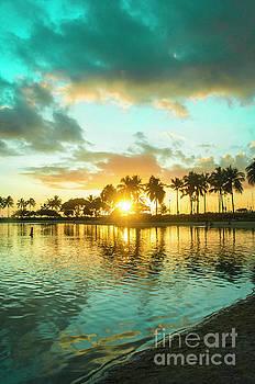 Awwww Hawaii by Micah May
