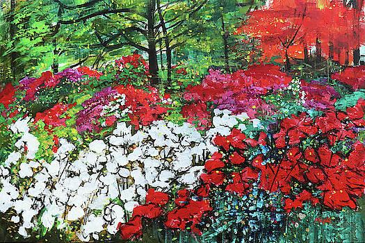Azalea Garden National Arboretum 201843 by Alyse Radenovic