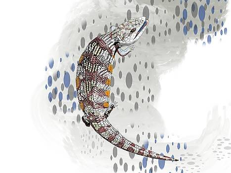 B is For Blue Tongue Lizard by Joan Stratton