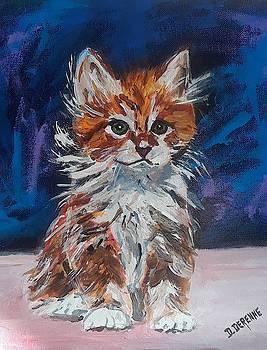 Jasper the Kitty by Dominique Derenne