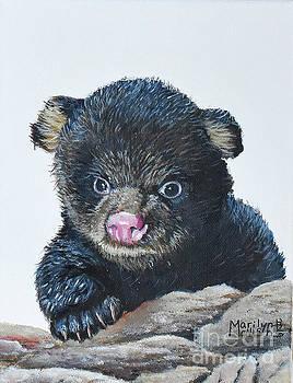 Baby Bear  by Marilyn McNish