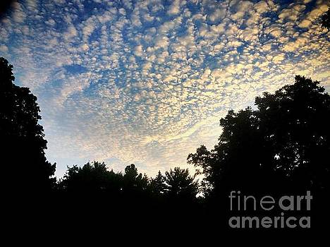 Baby Clouds by Frank J Casella
