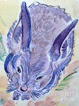Baby Rabbit by Virginia Vovchuk