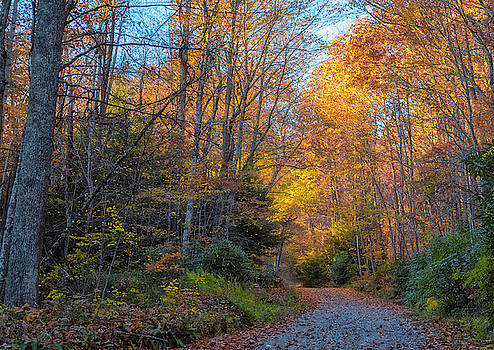 Back Road Beauty by Russell Pugh