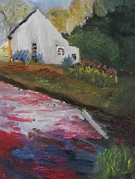 Back Yard Bog by Michael Helfen