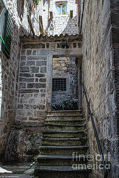 Backdoor Steps by Mitch Shindelbower
