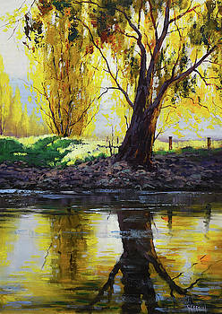 Backlight Tumut River by Graham Gercken