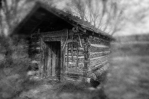 Sharon Popek - Backyard Shed Black and White