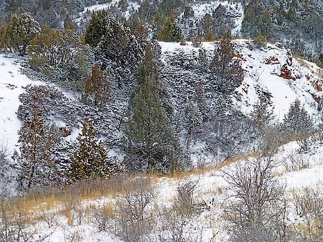 Badlands Winter by Cris Fulton