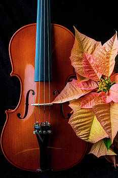 Baeutiful Violin And Poinsettia by Garry Gay