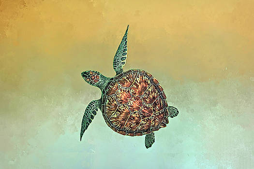 Bahama Sea Turtle 2 by Donna Kennedy