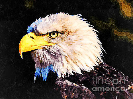 Bald Eagle by Leon Woods