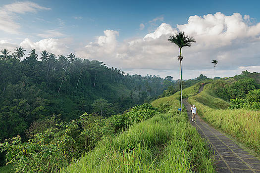 Bali Pathway by Ian Robert Knight