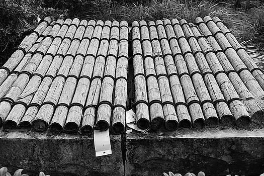 Bamboo Shelter by Benjamin Varga
