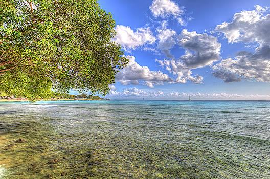 Barbados Summer  by David Pyatt