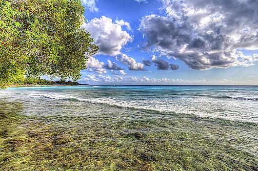 Barbados Summer Days  by David Pyatt