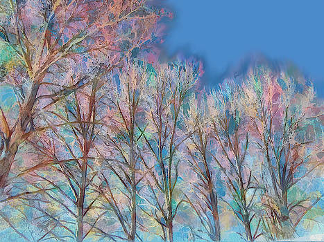 BareTrees, Early Spring by Robert Bissett