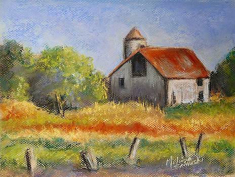 Barn in Iowa by Melinda Saminski