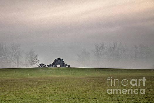 Larry Braun - Barn in the Mist