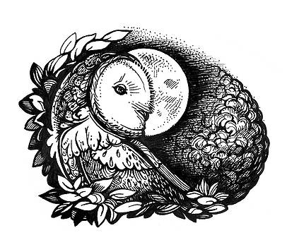 Barn Owl and the Moon by Yullapa Yuliya