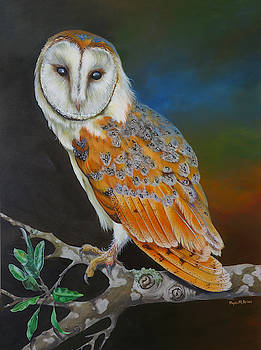 Barn Owl Hunting Interlude by Phyllis Beiser
