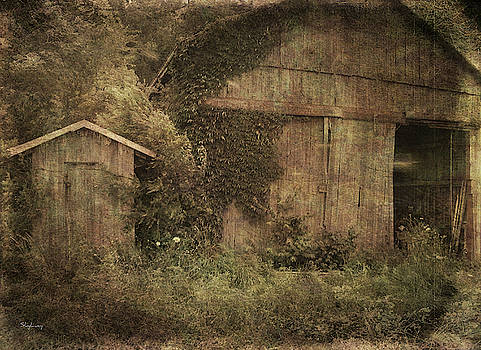 Barn with Outhouse by Cynthia Lassiter
