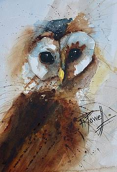 Barney The Owl by George Powell