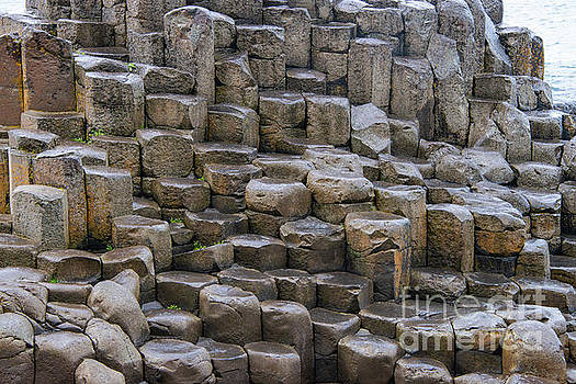 Bob Phillips - Basalt Columns and Stepping Stones