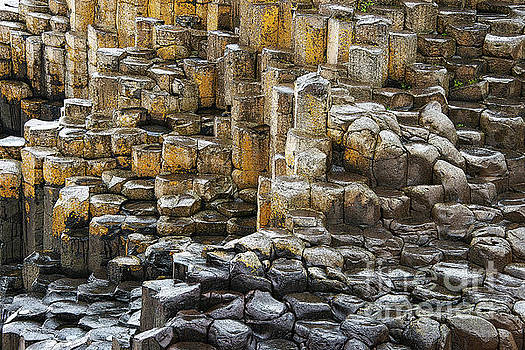 Bob Phillips - Basalt Stepping Stones and Columns