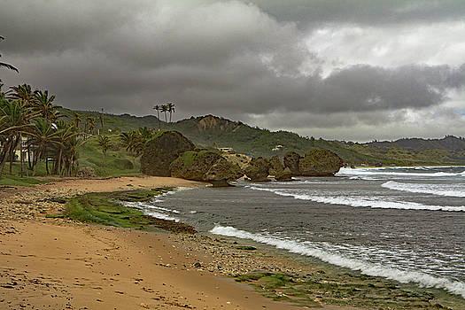 Bathsheba Beach by Tony Murtagh