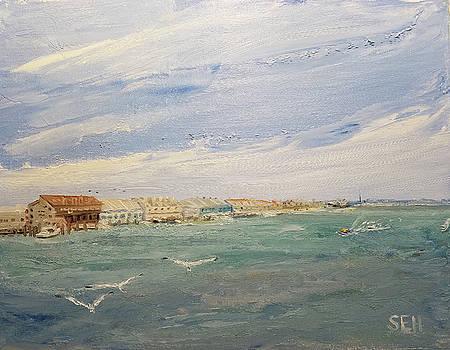 Bay Day by Susan E Hanna