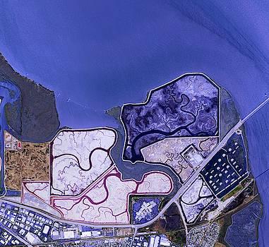 Bay Trail in San Francisco  by Planet Impression