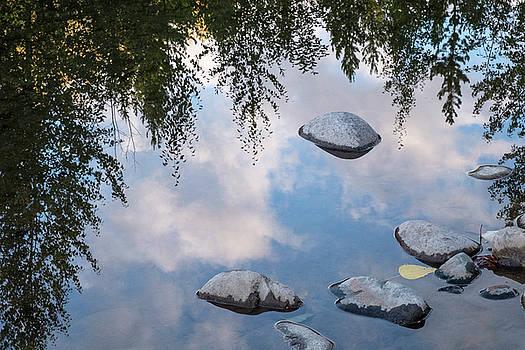 Be the Stillness by Mary Lee Dereske