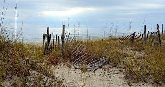 Beach Afternoon at St. George Island  by Carla Parris