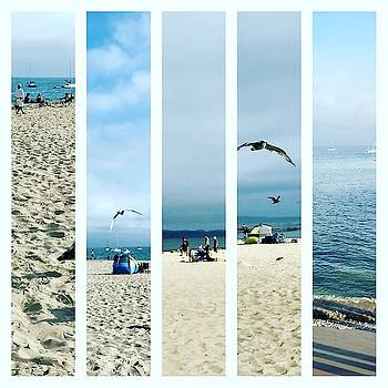 Beach Collage by TB Sojka